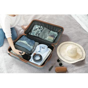 Smartflow Handheld Garment Steamer