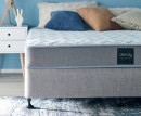 NEW-Dandy-Queen-Mattress Sale