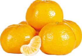 Australian-Imperial-Mandarins on sale