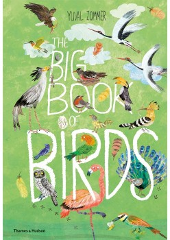 The-Big-Book-of-Birds on sale