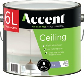 Accent-Ceiling-6L on sale