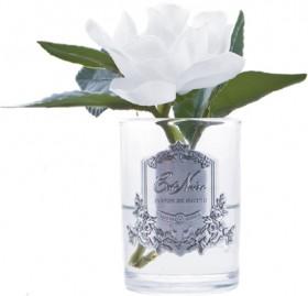 Cte-Noire-Gardenia-Single-Flower-12cm on sale