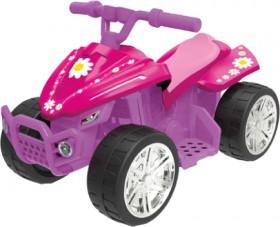NEW-Evo-6V-Quad-Pink on sale