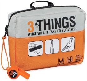 3-Things-What-Will-it-Take-to-Survive on sale